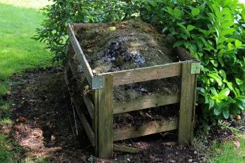 compost-419259_1920.jpg
