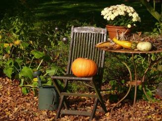 pumpkin-199371_1920